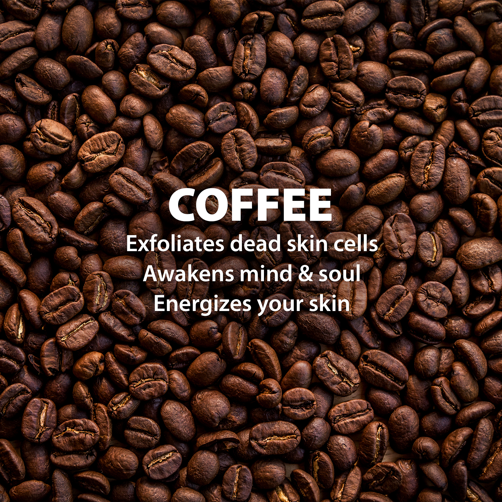 LetsShave Gentle Exfoliating Face Scrub with Coffee Grounds, Kaolin Clay, and Honey - 100 ml