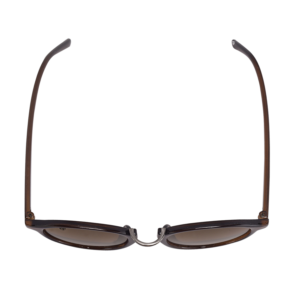 Walrus Brown Polycarbonate Oval Frames