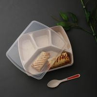 Dennmarks eco friendly lunch box designed for exclusively for kids with endless combination (DNMK-LB-1119-058) - Brown
